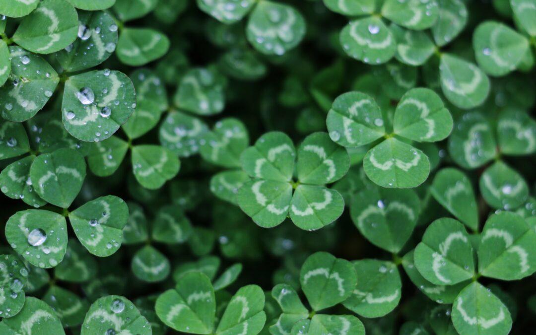 American Fiddling's Celtic Roots